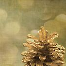 Merry Christmas by Anne Staub
