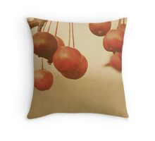 ...crab apple baubles............. Throw Pillow