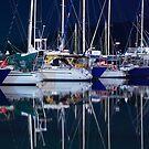 Calm Harbour by Peter Doré