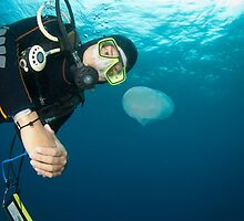 Hanging around to see the jellyfish by Stephen Colquitt