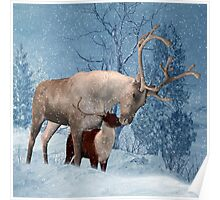 Reindeer And Fawn Winter Scenery Poster