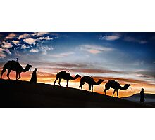 Camels - 2 Photographic Print