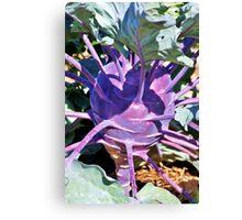 Odd Vegetable Canvas Print