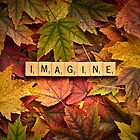 IMAGINE-Autumn by onyonet photo studios