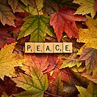 PEACE-Autumn by onyonet photo studios