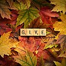 GIVE-Autumn by onyonet photo studios