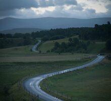 Morning road by Michael Marten