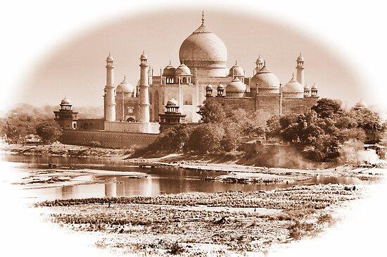 The Taj by Brendan Buckley