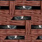 Cats' Eyes by pondripple