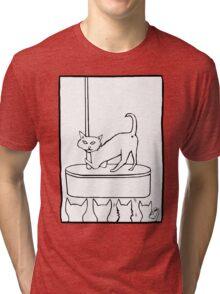 Cat Stripper Fun Tri-blend T-Shirt