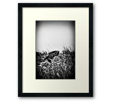 """""""Bow"""" (B&W) Framed Print"""