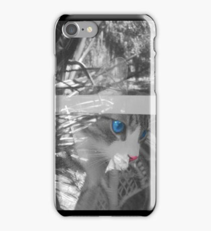 Regelwyn in the Window iPhone Case/Skin