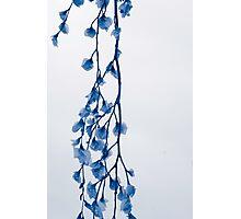 Floral Dress Photographic Print