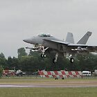 Boeing Super Hornet by Barrie Woodward