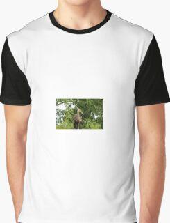Limkin Graphic T-Shirt