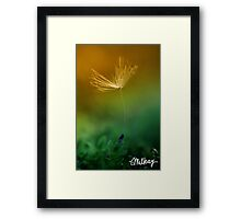 Once Upon a Wish Framed Print