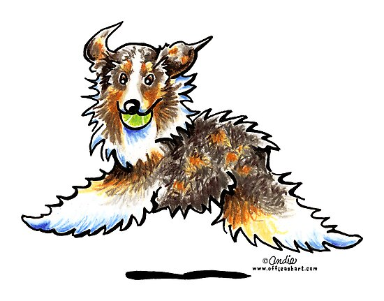 Red Merle Australian Shepherd Let's Play by offleashart