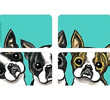 Boston Terriers in the Window by offleashart