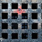 Life's Grate by milkayphoto