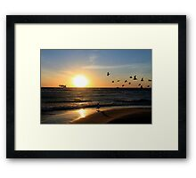 Seagulls against the Sun Framed Print