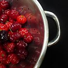 Berry Picking by Barbara Morrison