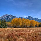 Fall at Hillsdale Meadow by JamesA1