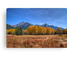 Fall at Hillsdale Meadow Canvas Print