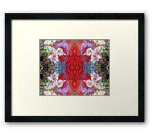 Birds Outside The Box (Red Lightning Agate) Framed Print