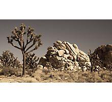 Dramatic Mojave Desert Panorama Photographic Print