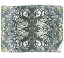 Silver Snowflake (Marcasite in Agate) Poster