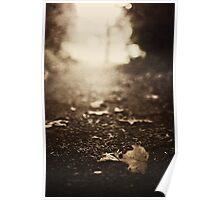 September morning gold Poster