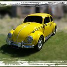 Little Beetle by Keith Hawley