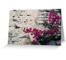 flowers in médina Greeting Card