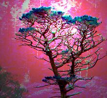 Mystic Tree iPhone/iPod Case by Carol Bleasdale