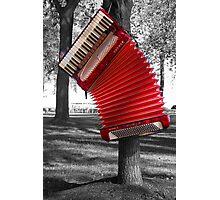 The Red Verdi V hangs Photographic Print