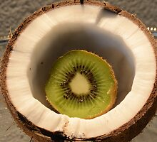 So thats where Kiwis come from.... by Nicole W.