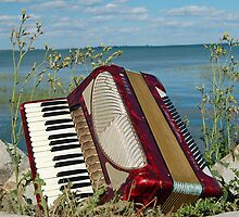 Red Accordion by Diane  Kramer