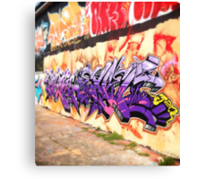 Wall of Colour Canvas Print