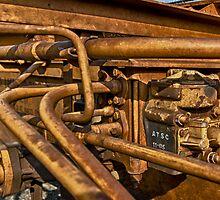 Steel Web by Adam Northam