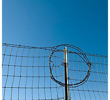 Section of a fence topped by barbed wire Photographic Print