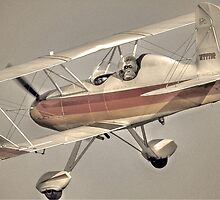 Monkey Pilot  by Savannah Gibbs
