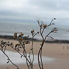 Life's a beach by Prettyinpinks