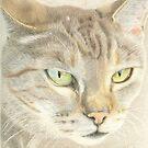 Tiger by Jennie L. Richards