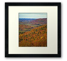 Canopy of Orange Leaves in the Ottawa Valley Framed Print