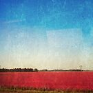 Aumn pink - red  fields on blue textured sky by Andreka