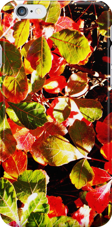 Painted Leaves by Shawna Rowe