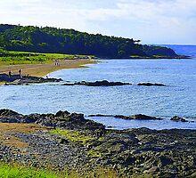 Helen's Bay Beach by Fara