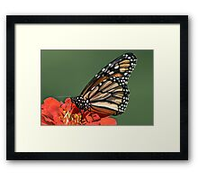 The Butterfly Who Wears A Polk-A-Dot Jumpsuit Framed Print