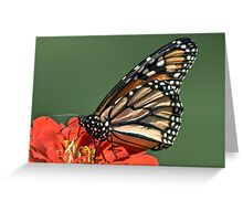The Butterfly Who Wears A Polk-A-Dot Jumpsuit Greeting Card