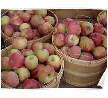 Bushels of Apples Poster